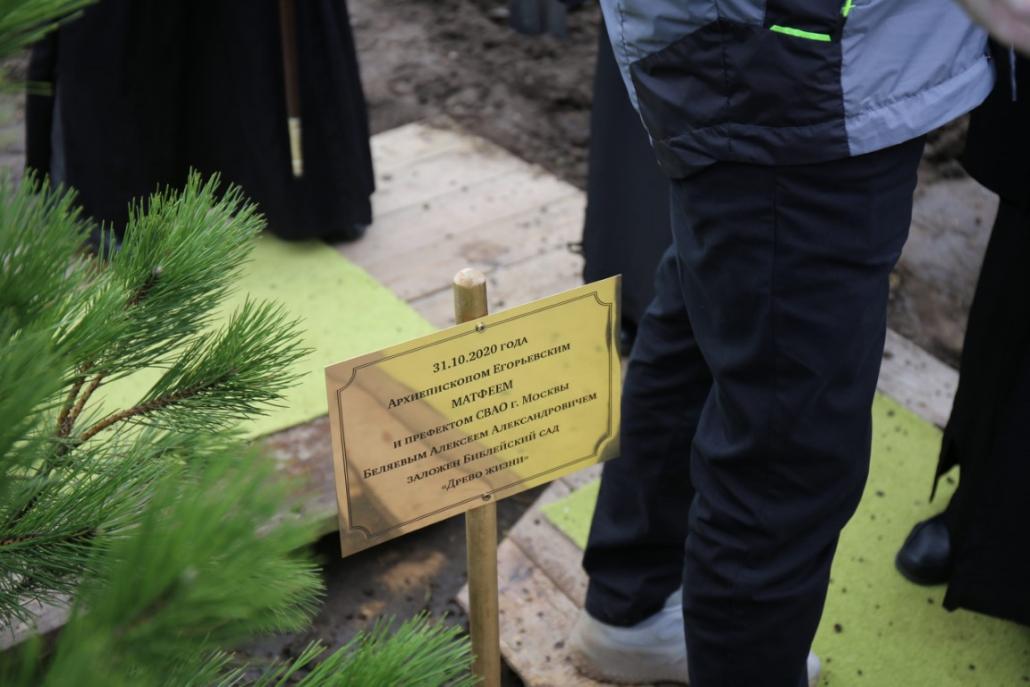 Заложен библейский сад